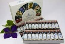 Bach-Blütentherapie Bachblüten Therapie Alternativ