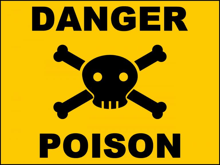 Behandlung gegen Schwangerschaftsvergiftung