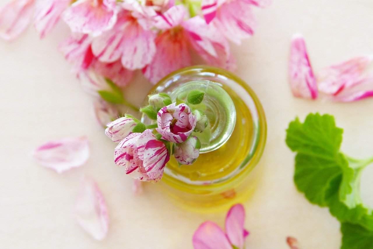 Öl Geranien Blätter Blüten Ätherische Öle Duft
