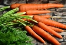 Möhren Karotten Gemüse Ernte Gesund Rote Möhren