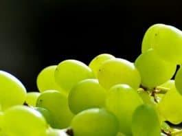 Trauben Früchte Gesund Weintrauben Frucht