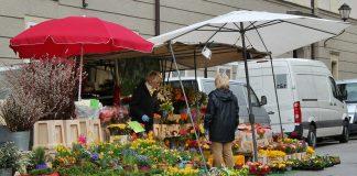 Markt Markttag Blumenstand Marktschirme Verkauf