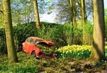 Volkswagen Beetlle Volkswagen Autowrack