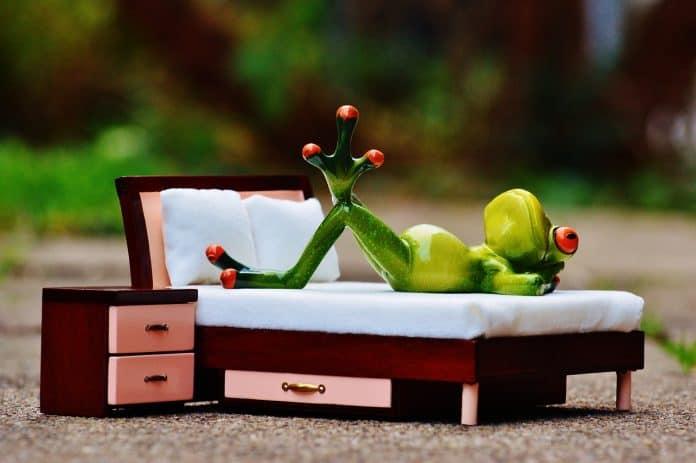 Frosch Verliebt Gedanken Bett Figur Lustig