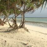 Sansibar - Foto Adeba