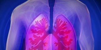 Oberkörper Lunge Copd Krankheit Arzt Befund
