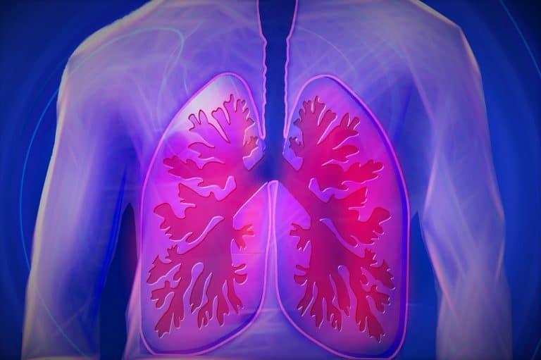 Lungenfibrose Diagnose und Therapie-Ansätze