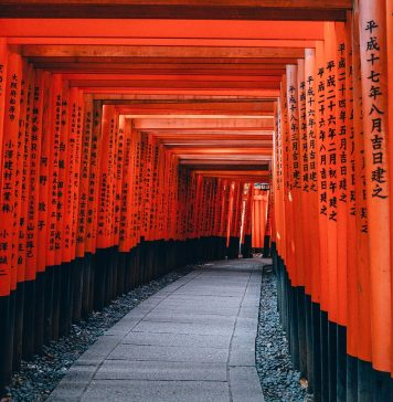 Architektur Japan Kyoto Pfad Shinto Tempel Rot