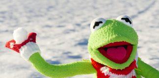 Kermit Frosch Schneeball Werfen Schnee Winter