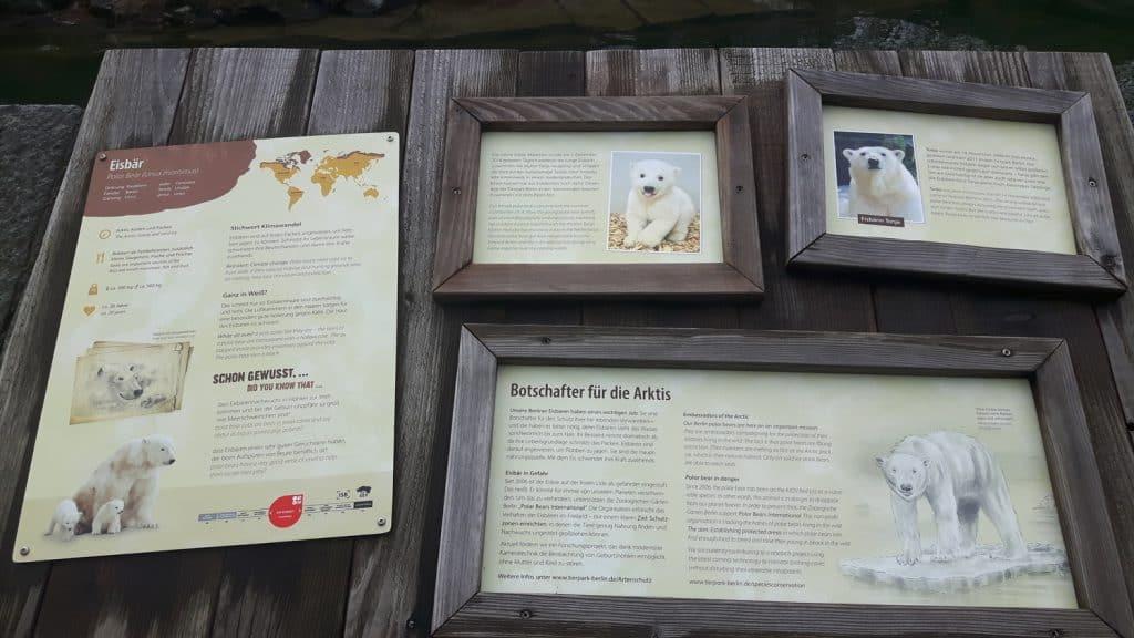 Eisbären Info Tafel imTerpark (Foto: Hans-Peter Gaul)