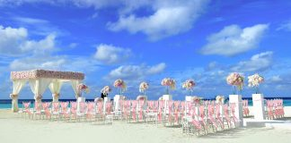 atoll dekor dekorationen ziel blumenhändler blumen
