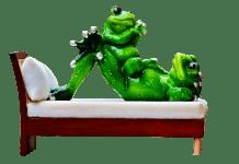 Mama Und Kind Frösche Bett Liegen Lustig Niedlich