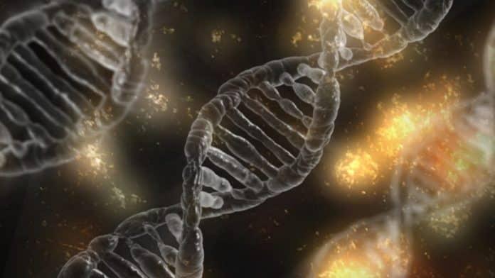 Dna Mikroskopische Zelle Gen Helix Wissenschaft