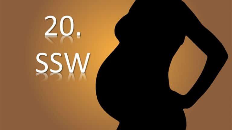 20. SSW – 20. Schwangerschaftswoche