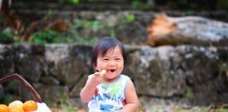 Picknick Baby Essen Niedlich Kinder Lebensmittel