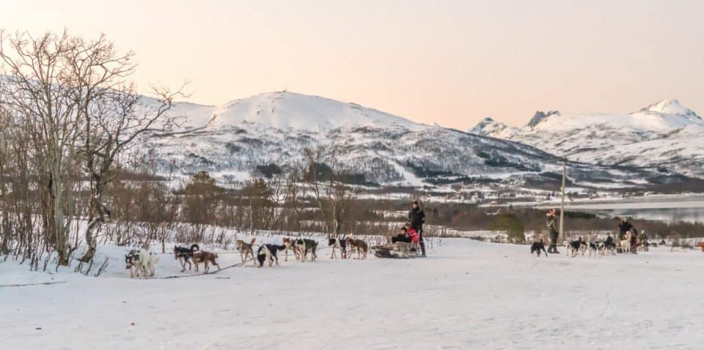 Norwegen mit der Familie entdecken und schwärmen 3