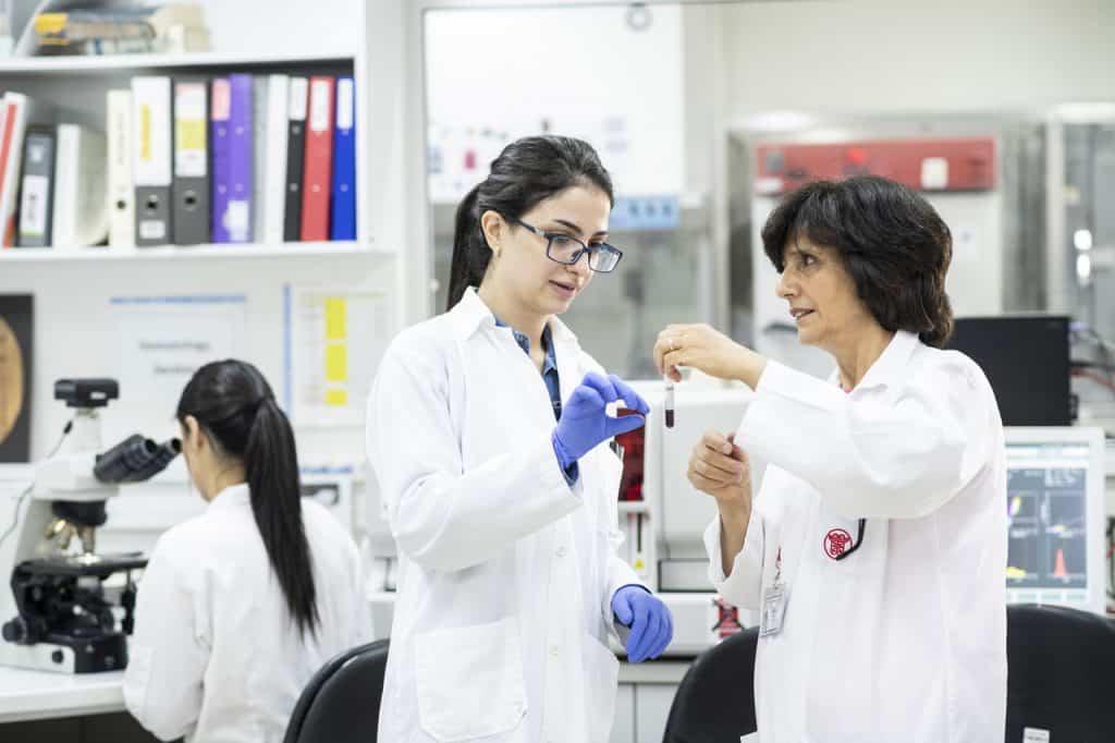 Das Labor gibt den Ärzten wichtige Anhaltspunkte für ihre Diagnosen. Darum ist Dr. Hiyam Marzouqa im ständigen Kontakt mit den Kolleginnen im Labor.