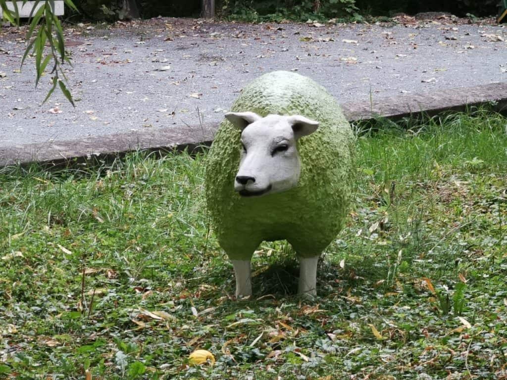Best of Bauhaus - Warum ist die Kuh rot und das Schaf grün? 18