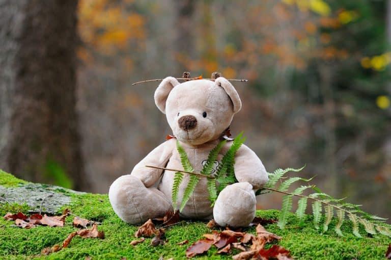Bodo Bär kauft ein
