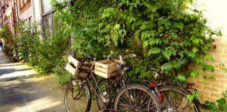 Fahrräder Stadt Geparkt Straße Wand