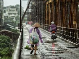 Saison Brücke Nass Menschen Straße Frau Asien