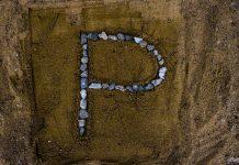 Vorname und Namenstag mit Buchstabe P