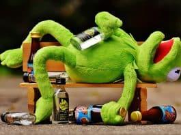 kermit frosch trinken alkohol betrunken bank
