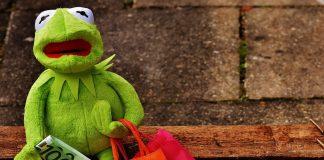 Einkaufen Shoppen Shopping Kermit Geld Euro