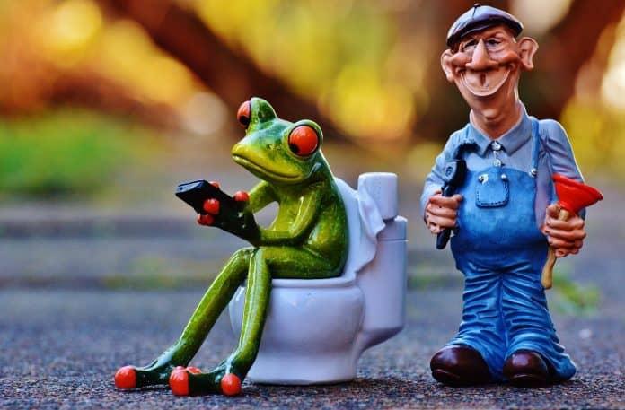 Klempner Frosch Klo Pömpel Reparieren Sitzung