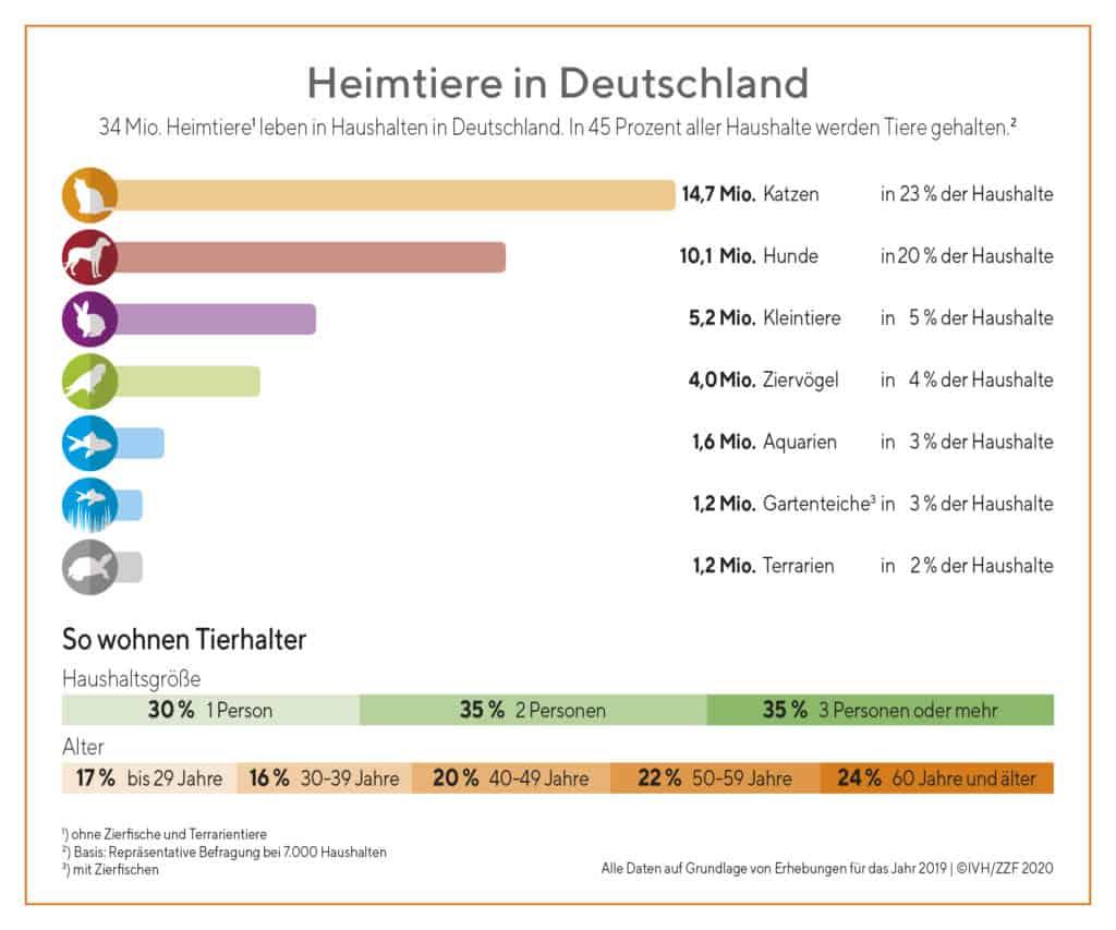 Heimtiere in Deutschland Infografik