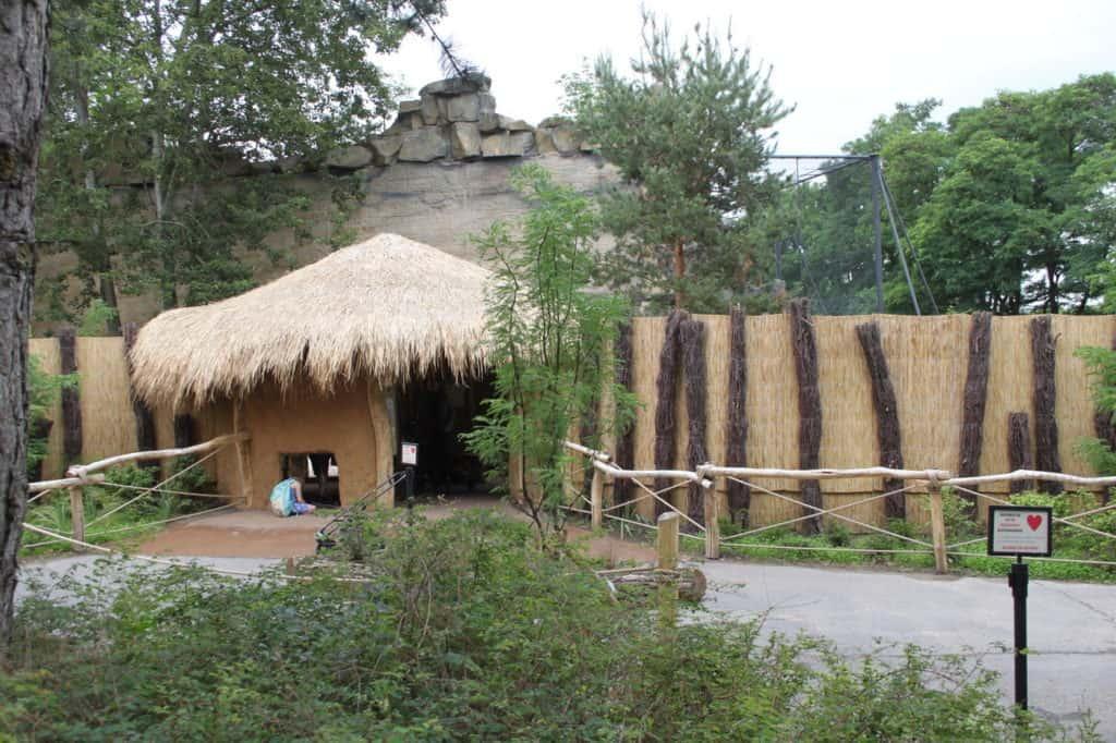Tierpark Berlin (Afrika-Welt)k
