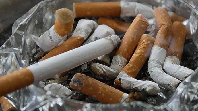 Rauchfrei aufwachsen 1