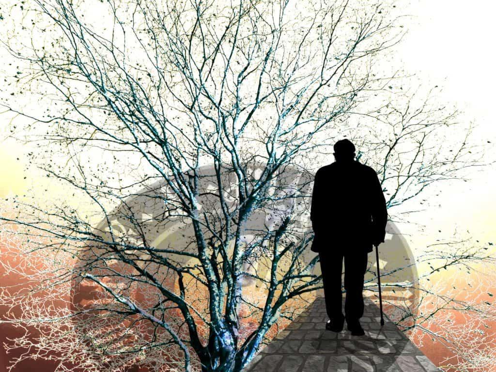 Kettenreaktion Alzheimer-Demenz