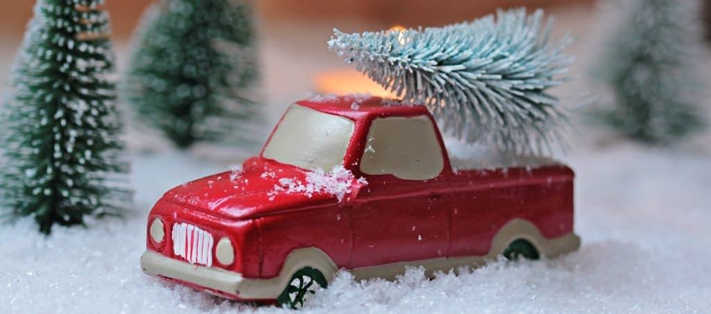 Weihnachtsbaum transportieren - Weihnachtsbaum im Kofferraum: tannenbaum, weihnachten, weihnachtsbaum