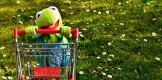 Kermit Frosch Einkaufen Einkaufswagen Spaß