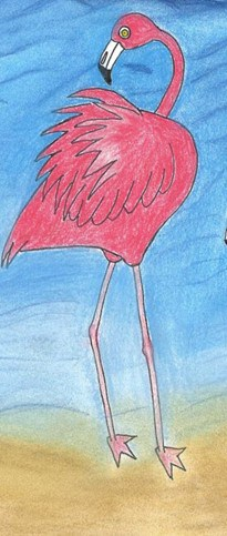 Flamingo Sindbad ist ein Kinderbuch von Harald Schmidt (Autor), Hicham Sadoun und Hafiidha Zitouni (Zeichner) Bildquelle: Autor