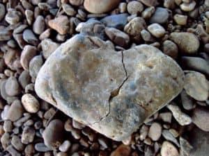 Fazit: Tako-Tsubo-Syndrom / Broken-Heart-Syndrom / Stress-Kardiomyopathie: