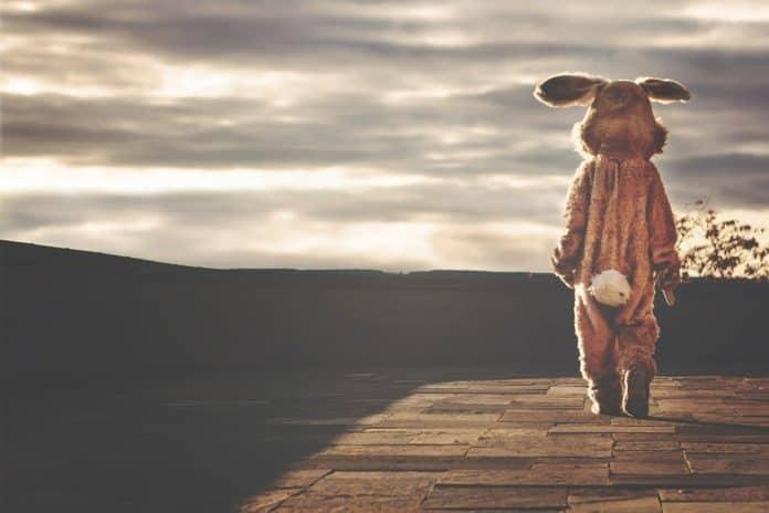 kaninchen hase kostüm tier ostern skurrilen