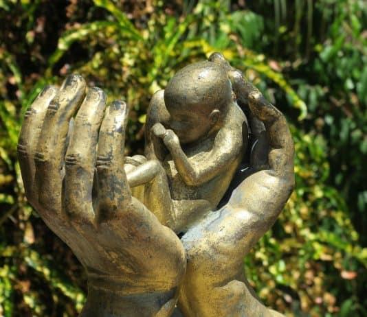 abtreibung hand hände schützende hand fötus schutz