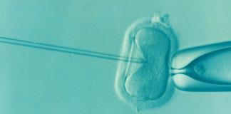 ivf fruchtbarkeit unfruchtbarkeit icsi ovum samen