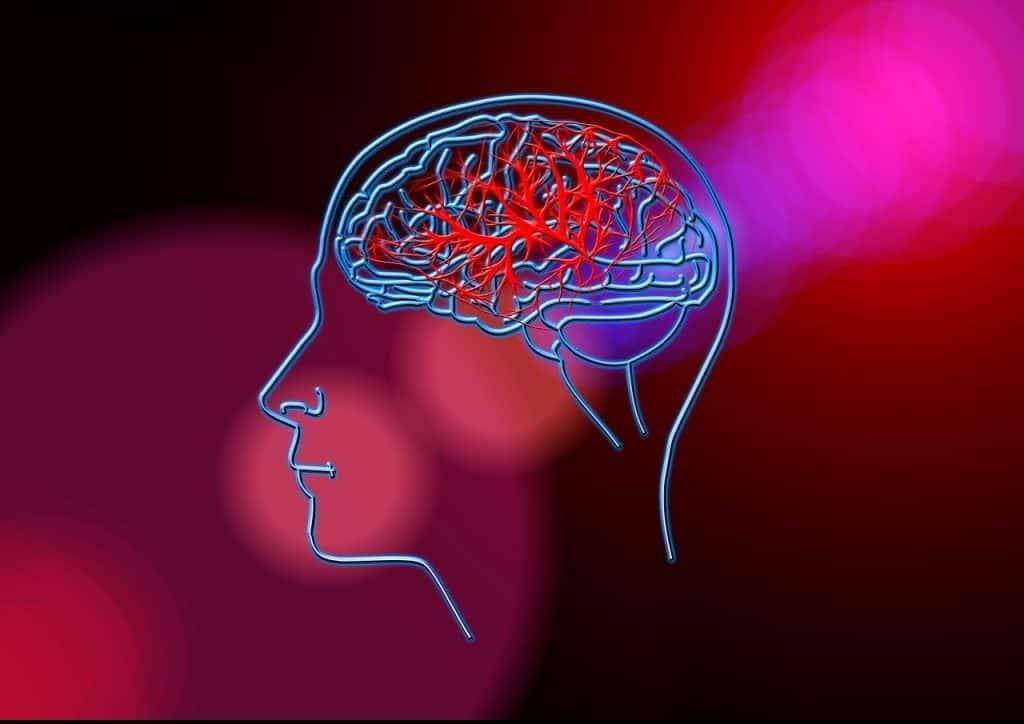 Alzheimer über 100 Menschen erkranken täglich